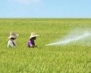 纳米缓释技术可大幅减少农药用量