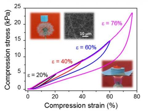 西安交大在超轻可压缩碳化硅陶瓷气凝胶研究领域取得进展