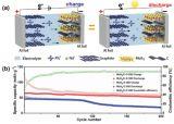 中科院深圳先进院:研发出基于二硫化钼/碳纳米复合材料的钠型双离子电池