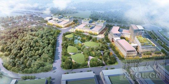 湘潭市海泡石特色产业加速成果转化