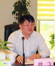 超长碳纳米管的未来——访清华大学教授魏飞