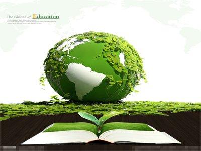 哪些原因导致环保督察工作进展缓慢?