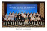 清华负责研发的石墨烯高电压超级电容技术被鉴定为国际领先水平