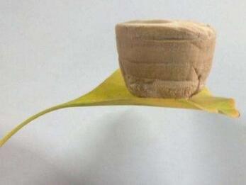 苏州纳米所成功制备柔性、自清洁的石墨烯气凝胶智能相变纤维