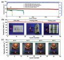 中科院深圳先进院:研发出基于改性凝胶聚合物电解质的高效柔性双离子电池