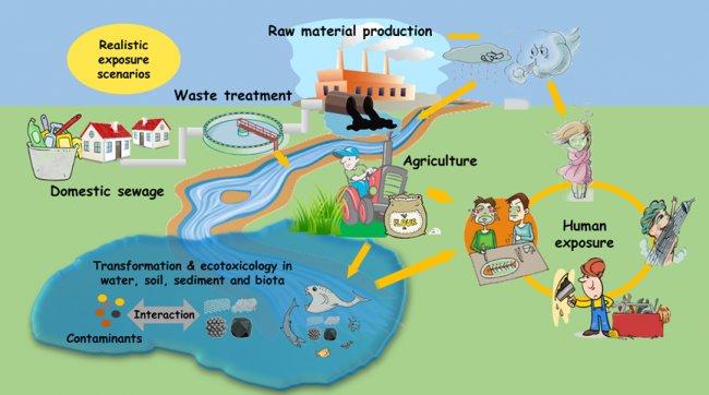 论文|纳米材料的环境健康风险与纳米产业的可持续发展综述