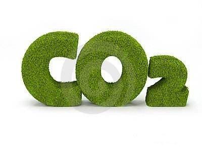 """美研究人员开发出可""""吃""""二氧化碳长大的材料"""