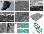 中科院青岛能源所成功制备柔性载硫体用于高性能锂硫电池