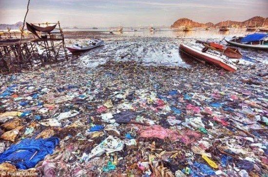 中英共同应对海洋塑料污染 从环保意识落地到行动规范仍存挑战