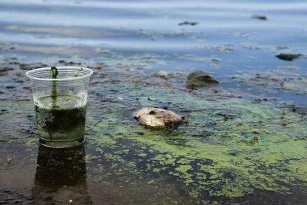 中央环保督察通报:荆门磷化工企业污染触目惊心 有渣场殃及池塘水体呈强酸性