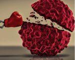 印尼科研人员开发出癌症早期检测工具