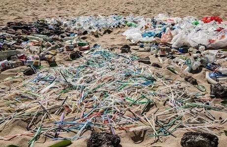 澳洲饮品巨头将停止使用塑料吸管
