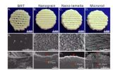3D打印生物陶瓷支架表面微纳米结构调控骨-软骨一体化修复新进展