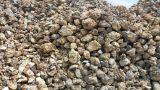 塞拉利昂矿业:计划2019年向中国出口60万吨铝土矿