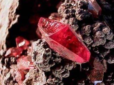 江苏东海金红石新材料项目启动