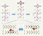 插层离子产生的二维稀磁多铁半导体