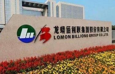 龙蟒佰利子公司获得政府补助2260.87万元