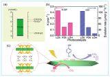 新疆理化所层状硅酸锌光催化材料研究取得进展