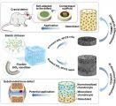 东华大学研发成功新型无机纳米纤维弹性材料