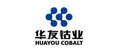 华友钴业放弃并购巴莫科技 拟8.05亿购华友衢州15.68%股权