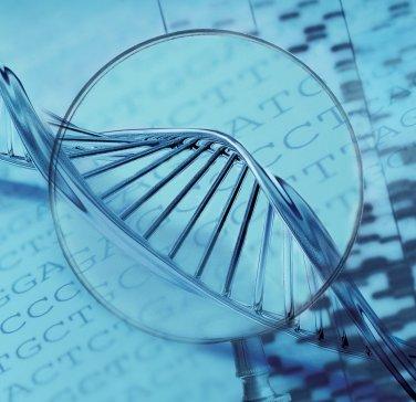 生物传感器可表征不同类型干细胞