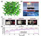柔性钠基双离子电池技术获新进展