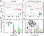 重费米子超导体UTe2的理论研究获进展