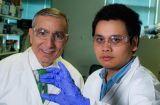 科学家重大新发现:废弃物可以变成石墨烯