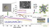 上海硅酸盐所在新型氟基固态电解质研究方面取得进展