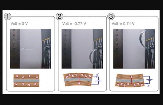 """瑞典科研人员开发出""""变形""""碳纤维复合材料 可按需改变形状"""