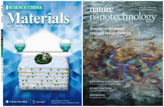 俞书宏课题组再推轻质高强韧纳米纤维素仿生结构材料