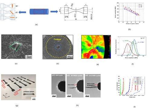 中科院力学所在增材制造钛合金疲劳性能研究中取得进展