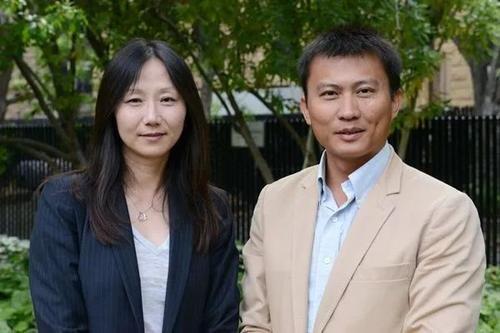 """斯坦福""""双子星"""":崔屹&鲍哲南的强强碰撞"""