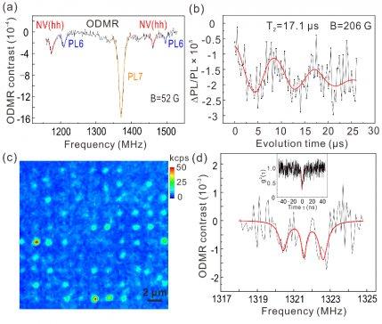 中国科大实现通讯波段碳化硅色心的室温自旋操控