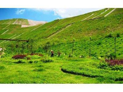 广西建成绿色矿山76座 目前全区列入绿色矿山创建的矿山数量超过1100座