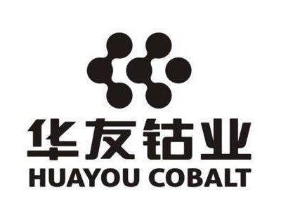 华友钴业:公司与LG化学合作建设三元前驱体和正极材料项目