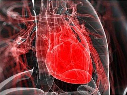 """人造器官要来了?科学家3D打印出会""""砰砰跳""""的心脏雏形"""
