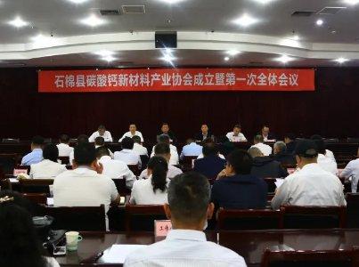 祝贺!石棉县碳酸钙新材料产业协会成立