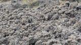 9月29日国内部分地区粉煤灰报价