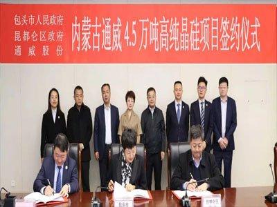 投资45亿!产能4.5万吨高纯晶硅项目成功签约