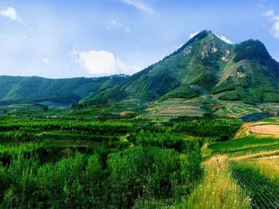 《宁夏回族自治区绿色矿山建设行动 方案(2021-2022年)》