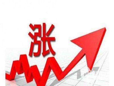十几家沉淀硫酸钡企业集体涨价  背后的原因竟是......