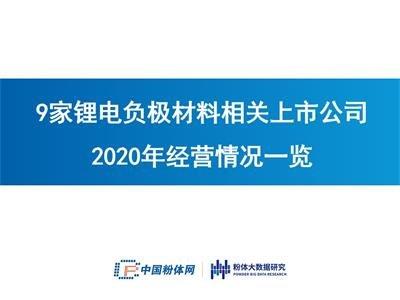 9家锂电负极材料相关上市公司2020年经营情况一览
