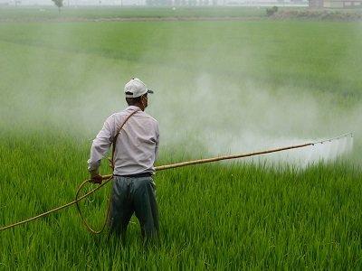 科研新发现:新型红外光助力农药有效利用率