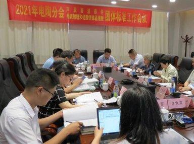《声表面波器件用铌酸锂和钽酸锂单晶薄膜》团体标准工作组会议在济南召开