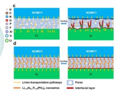 深圳国际研究生院团队合作在长循环固态锂电池及其离子输运机制方面取得新进展
