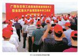 广西华昇200万吨氧化铝项目开工建设
