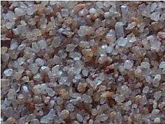 硅石子的图片