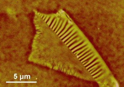 构造石墨烯纳米结构的新进展