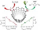 宁波材料所纳米碳催化研究取得新进展